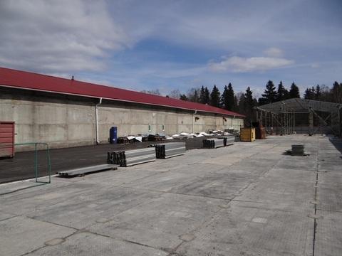 Производственно-складское помещение с организованным бизнесом