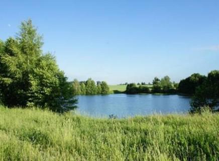 20 соток у прудов в д. Шапкино (4 смежн. участка вместе или раздельно)