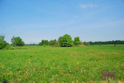 Продается зем.участок 3,5 га, д.Подушкино, Одинцовский р-он