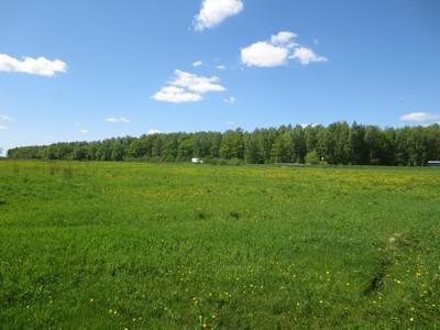 Земельный участок с/х назначения, 5000000 руб.