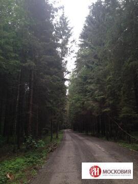 8,21 сот. Киевское ш. 37 км от МКАД.