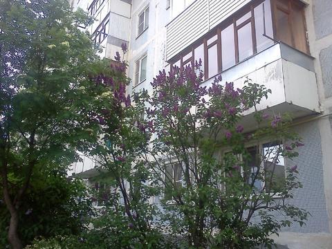 Голицыно, 1-но комнатная квартира, Можайское ш. д.25, 20000 руб.