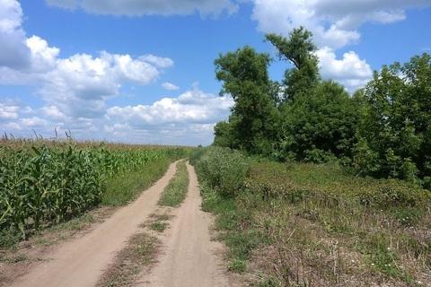 Продается участок с/х 3,5га в 4км от д.Рыболово, Новорязанское шоссе
