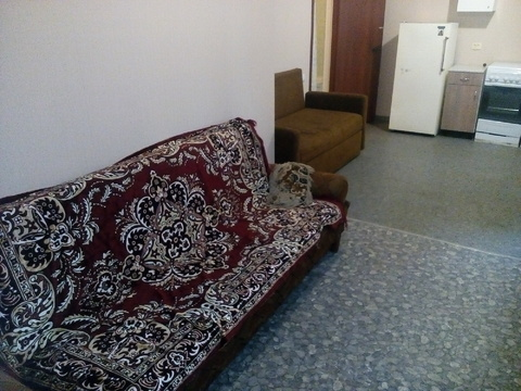 Сдам одно комнатную квартиру Сходня Химки