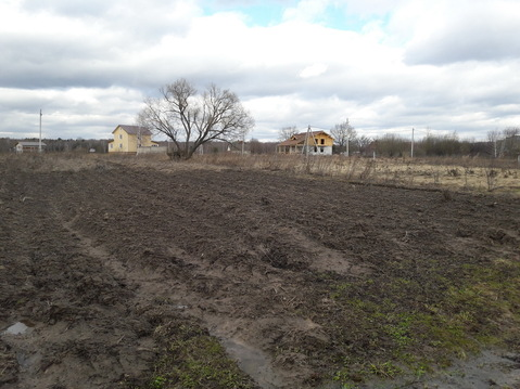 Продается земельный участок в д.Каменка Озерского района