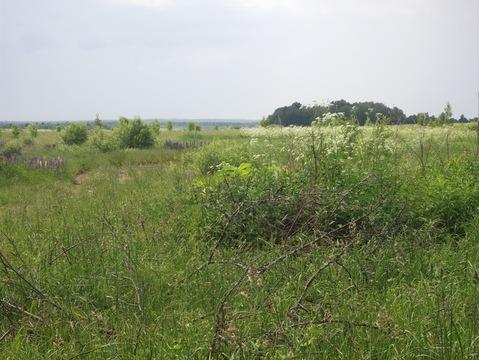 Срочная продажа большого учас тка земли в д.Орешки Рузский р.