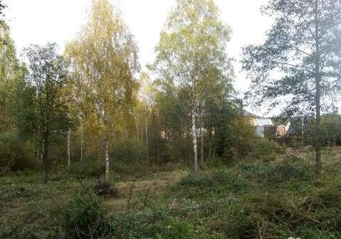 Шикарный участок в деревне Сергеевка