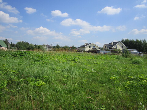 Продается земельный участок в с. Ельдигино, Пушкинский р-н