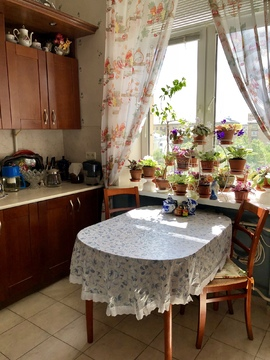 Просторная двухкомнатная квартира в сталинском кирпичном доме