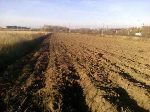 Земельный участок, село Липицы Серпуховского района, 1350000 руб.