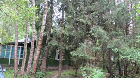 Дом в с.Абрамцево Сергиево-Посадского района МО