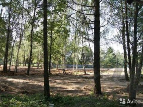 Наро-Фоминск, земельный участок 12 соток