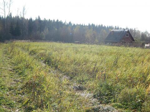 Участок 30 соток в д. Лобково рядом с лесом