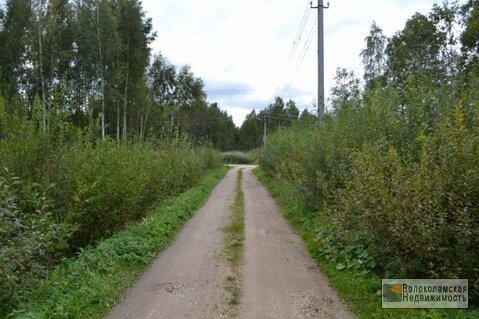 Дачный участок в Волоколамском районе, СНТ «Марково»