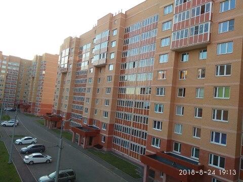 Сдам 2-х комн. квартиру в новом доме в Голицыно