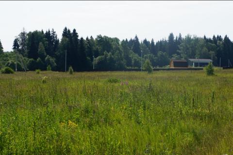 Земельный участок 15 соток д. Ситники, Клинский район, 1000000 руб.