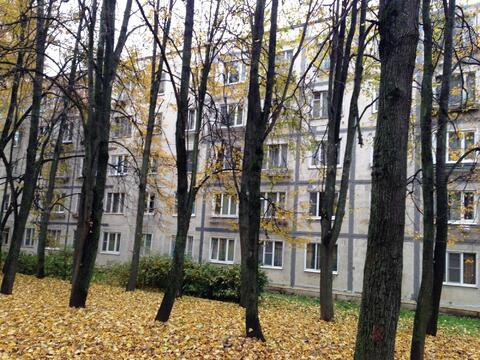 Комната ул.Профсоюзная д.36, 1150000 руб.
