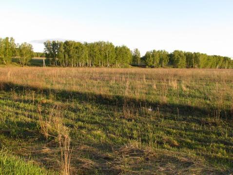 Продается земельный участок вблизи д.Доношово Озерского района