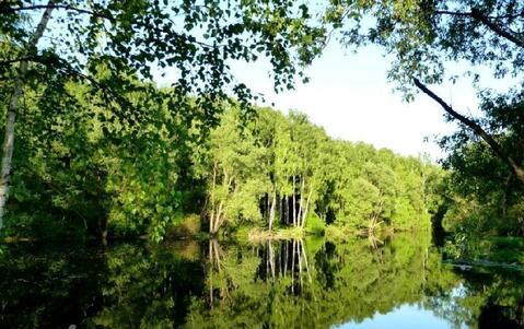 Шикарный участок У леса всего В 9 км от МКАД