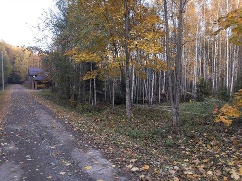 Продаю участок, 20 соток, Киевское ш, новая Москва, в лесу, 3,8 млн.р