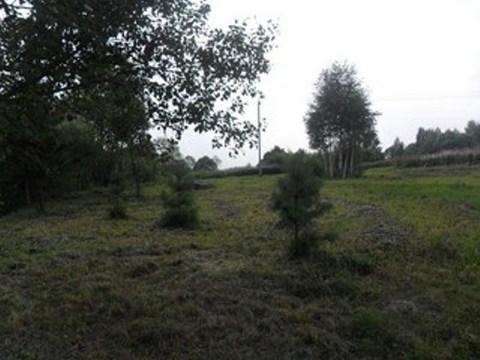 Продается земельный участок в Сергиево-Посадском районе, Ярославское ш