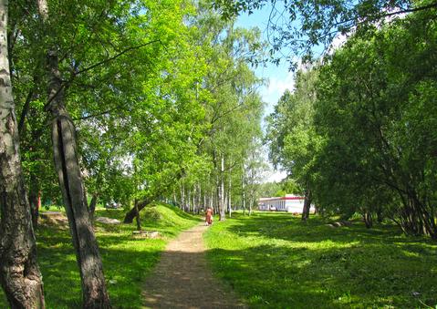 Уютная однушка рядом с лесом.