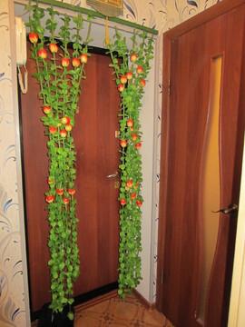 1-к квартира в г.Протвино ул.Победы д.12 кгт 18,5 кв.м