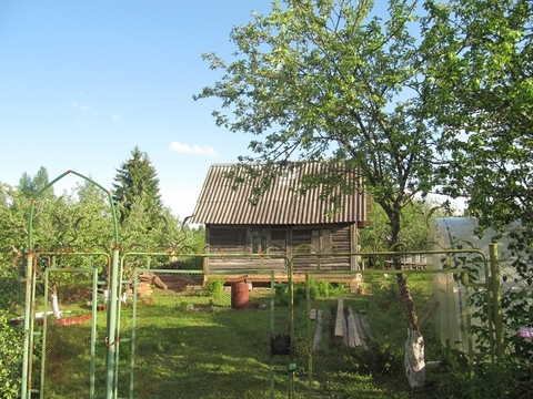 Дача в лесу, рядом с озером, 50 км от Москвы, дер. Алексеево
