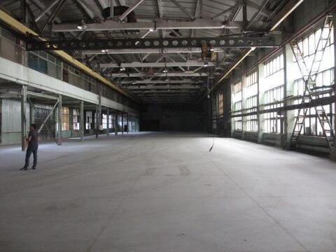 Теплый склад 2 700 м2 с кран-балкой в Видном