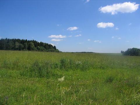 Великолепный участок 65 Га для поселка с ту в 45 км по М-4