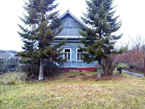 Дом 50 кв. м с земельным участком 25 соток д. Новомихайловка.