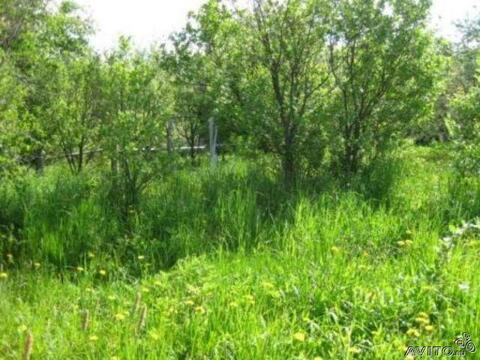 Продам земельный участок в Таллицах, 2000000 руб.