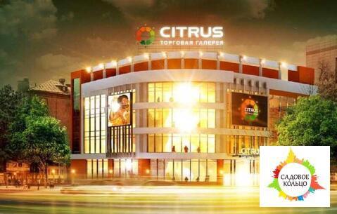 Предлагается к аренде офисная площадь в Торговом Центре Цитрус - город