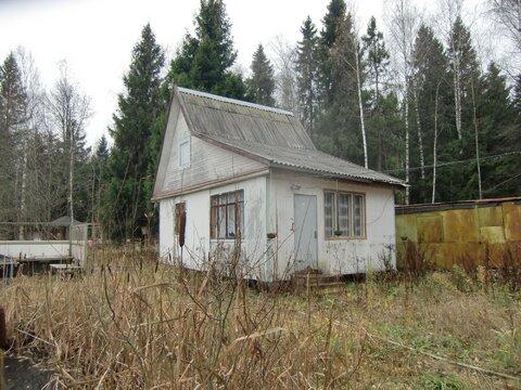 Продается участок в СНТ рядом с г.Пушкино