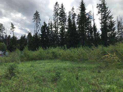 """Участок в СНТ """"Природа"""", Волоколамское шоссе, 28 км"""