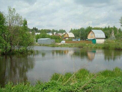 Дачный участок в сосновом лесу 55 км от мкада. д. Дальняя