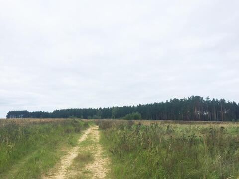 9 сот, в СНТ Настасьино д. Куминово, 65 км. от МКАД по Дмитровскому ш.
