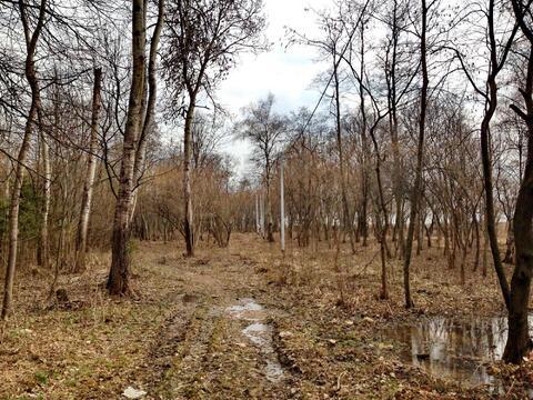 Участок в Лайково