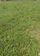 Продаётся земельный участок 6 состок в д. Протасово Щёлковского района, 1150000 руб.
