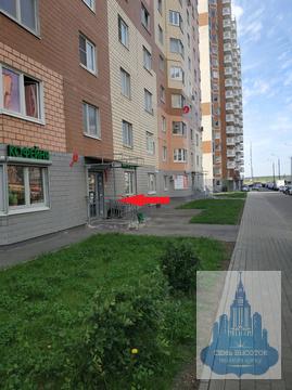 Домодедово, Курыжова, 24 кв.м