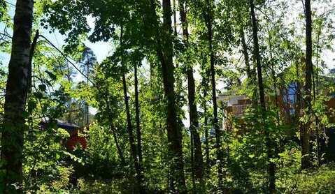 Продаётся лесной красивый участок в элитном микрорайоне Подмосковья