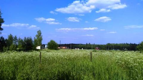 Участок 12 соток в д.Раково, Солнечногорского района.