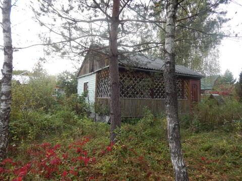 Дача 45 кв м на участке 10 сот в лесу по Минскому ш. близ д. Шаликово.