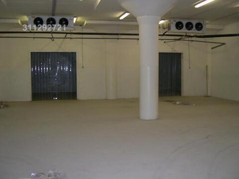 Морозильные и холодильные камеры: 180 кв.м, 220 кв.м, 250 кв.м, 3