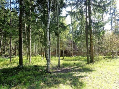 54 сотки, Трудовая, Генеральские дачи, 25 км от МКАД, Дмитровка