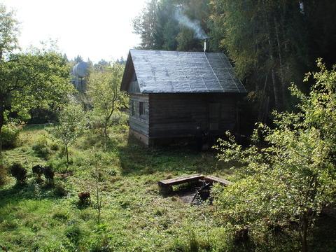 Прекрасная дача в лесу рядом с озером
