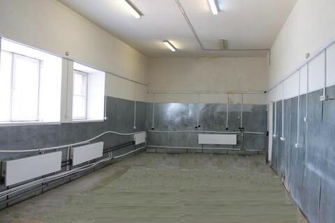 Аренда помещения свободного назначения, площадью 137,5 кв.м, м.Киевская