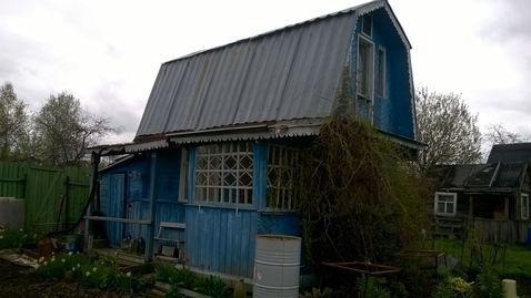Дача, Теплица, Сад, СНТ Игнатьево