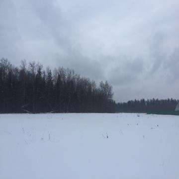 2,5 га в 13 км от Голицыно
