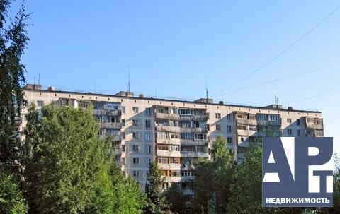 Двухкомнатная квартира в Андреевке